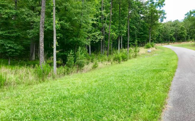 LT 46 Sharp Top Settlement, Blairsville, GA 30512 (MLS #279412) :: RE/MAX Town & Country