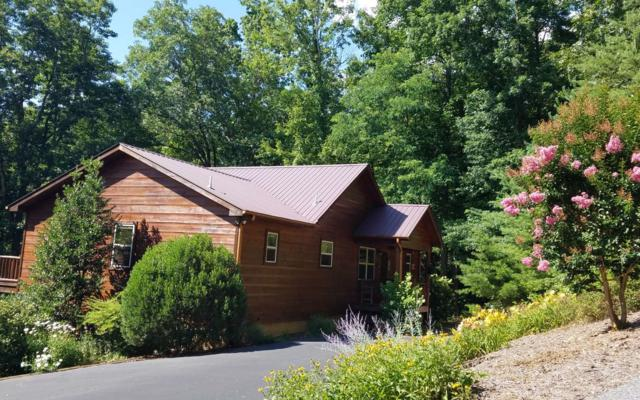 349 Red Twig Rd, Blairsville, GA 30512 (MLS #279640) :: RE/MAX Town & Country