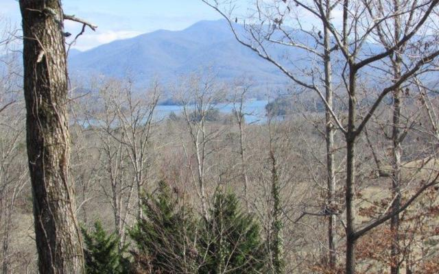 326 Chatuge Shores Cir., Hayesville, NC 28904 (MLS #280603) :: RE/MAX Town & Country