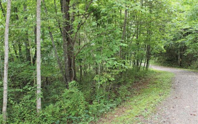 21 Bluebird Lane, Hayesville, NC 28904 (MLS #280985) :: RE/MAX Town & Country