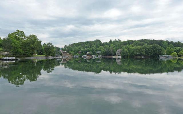 42 Sunnyside Estates, Hiawassee, GA 30546 (MLS #281531) :: RE/MAX Town & Country