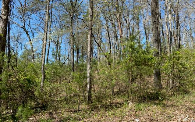 LT 28 Creekmont Crossing, Mineral Bluff, GA 30559 (MLS #281727) :: RE/MAX Town & Country