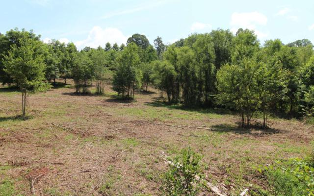 LOT 2 Peachtree Meadows Tr, Marble, NC 28906 (MLS #281783) :: RE/MAX Town & Country