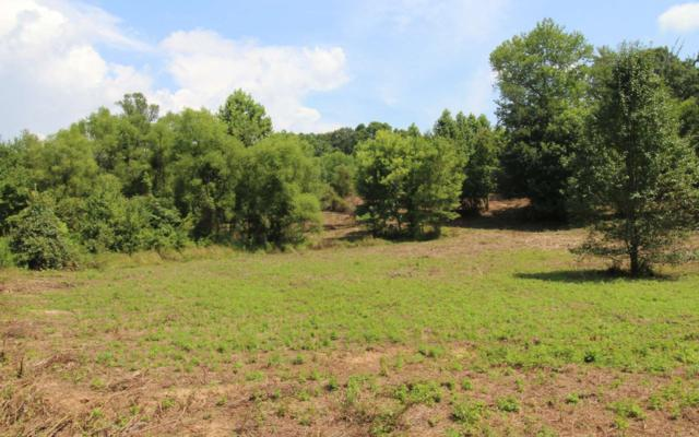 LOT 3 Peachtree Meadows Tr, Marble, NC 28906 (MLS #281784) :: RE/MAX Town & Country