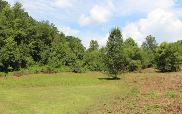 LOT 4 Peachtree Meadows Tr, Marble, NC 28906 (MLS #281785) :: RE/MAX Town & Country
