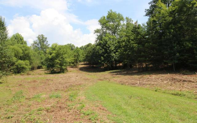 2-5 Peachtree Meadows Tr, Marble, NC 28906 (MLS #281787) :: RE/MAX Town & Country