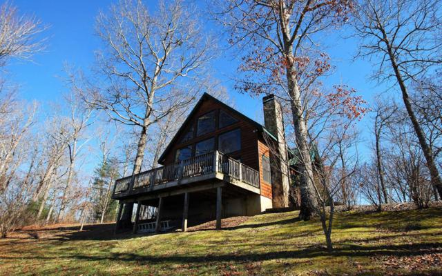 95 Bear Cub Trail, Hayesville, NC 28904 (MLS #281823) :: RE/MAX Town & Country