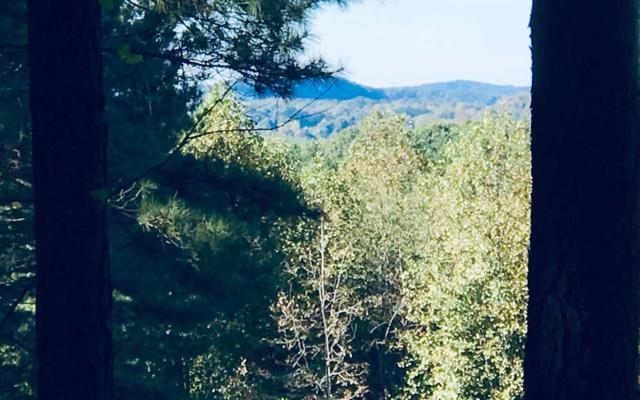 LT 2 Black Bear Ridge, Ellijay, GA 30539 (MLS #282515) :: RE/MAX Town & Country