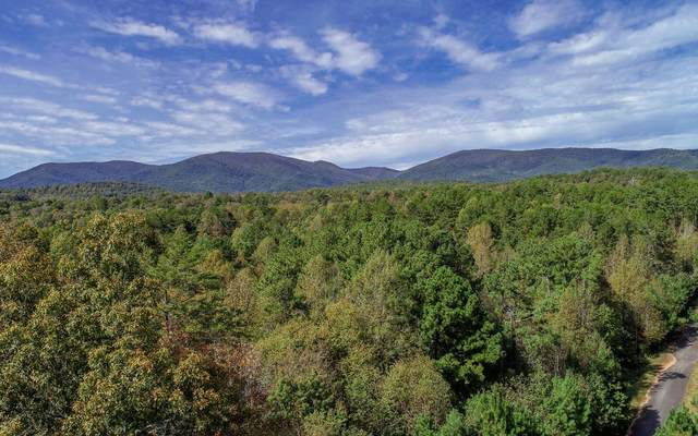 LT 21 East Ridge Lane, Ellijay, GA 30536 (MLS #283056) :: Path & Post Real Estate