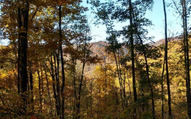 LOT 9 The Hemlocks, Ellijay, GA 30536 (MLS #283461) :: RE/MAX Town & Country