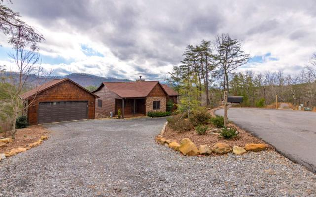 57 Camden Way, Mineral Bluff, GA 30559 (MLS #283704) :: RE/MAX Town & Country
