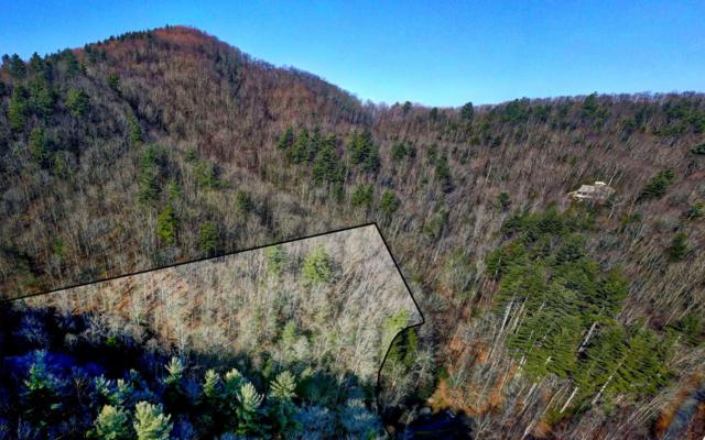 LT 28 Highland Crossing, Blairsville, GA 30512 (MLS #284589) :: RE/MAX Town & Country