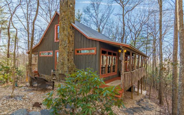 1030 Lost Forest Rd, Ellijay, GA 30536 (MLS #284884) :: RE/MAX Town & Country