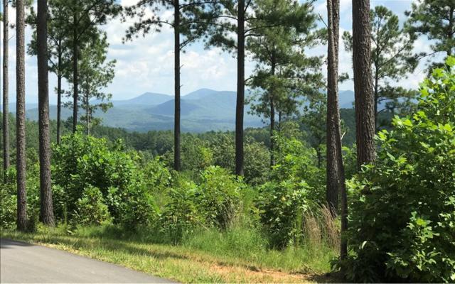 LT123 Thirteen Hundred, Blairsville, GA 30512 (MLS #285284) :: RE/MAX Town & Country