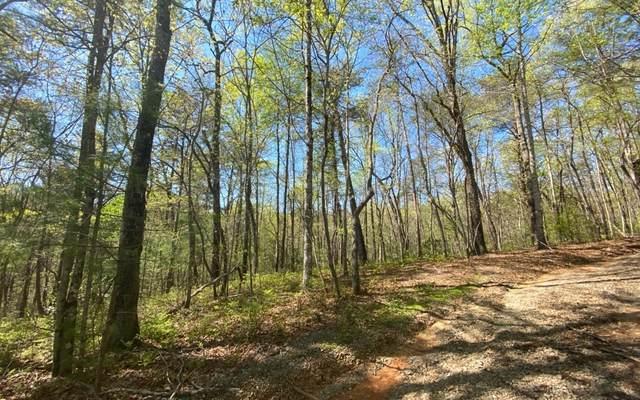 L205 Little Beaver Drive, Cherry Log, GA 30522 (MLS #285766) :: Path & Post Real Estate