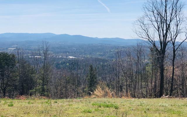T13 Talona Mountain Road, Ellijay, GA 30540 (MLS #286937) :: RE/MAX Town & Country