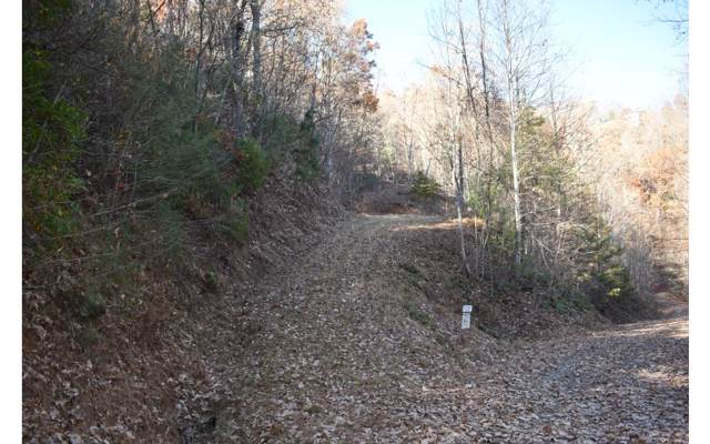 LT 16 Hidden Springs Dr., Brasstown, NC 28902 (MLS #287089) :: Path & Post Real Estate