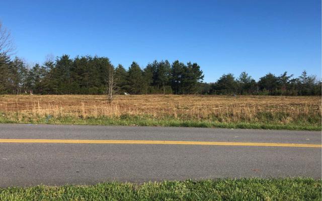9999 Windy Ridge, Blue Ridge, GA 30513 (MLS #287159) :: Path & Post Real Estate