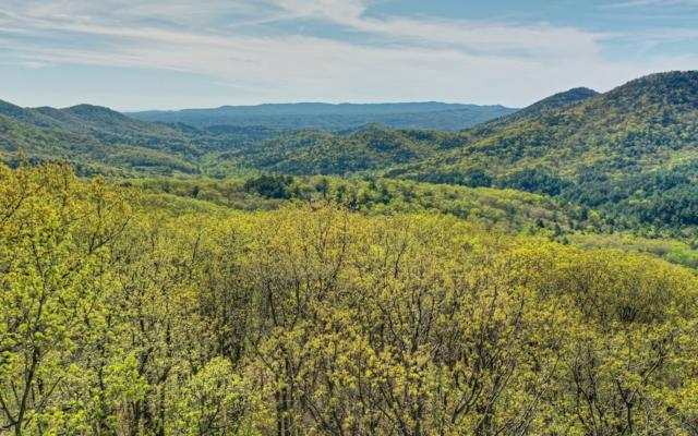 LT 10 The Hemlocks, Ellijay, GA 30536 (MLS #287183) :: RE/MAX Town & Country