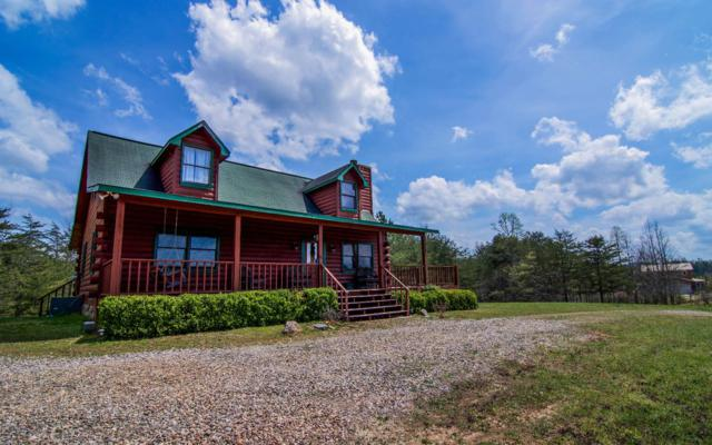 225 Porter Place, Blairsville, GA 30512 (MLS #287218) :: RE/MAX Town & Country