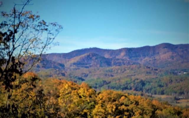 LOT97 Pontoosuc Trail, Mineral Bluff, GA 30559 (MLS #287432) :: RE/MAX Town & Country
