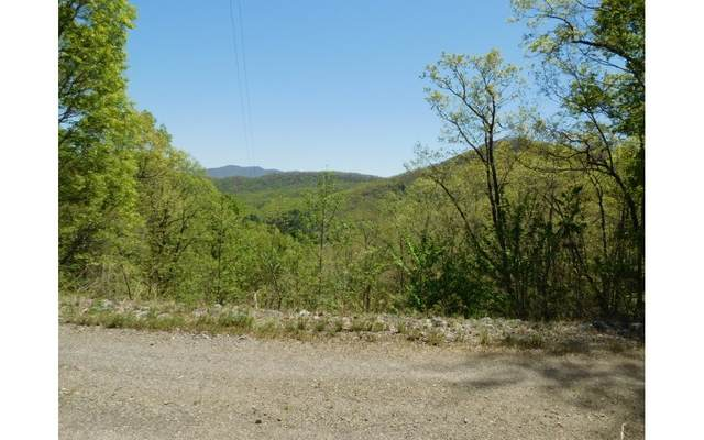 LT 21 Hidden Springs Dr, Brasstown, NC 28902 (MLS #287574) :: Path & Post Real Estate