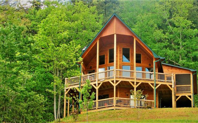 423 Mount Angelico Rd, Murphy, NC 28906 (MLS #287622) :: RE/MAX Town & Country