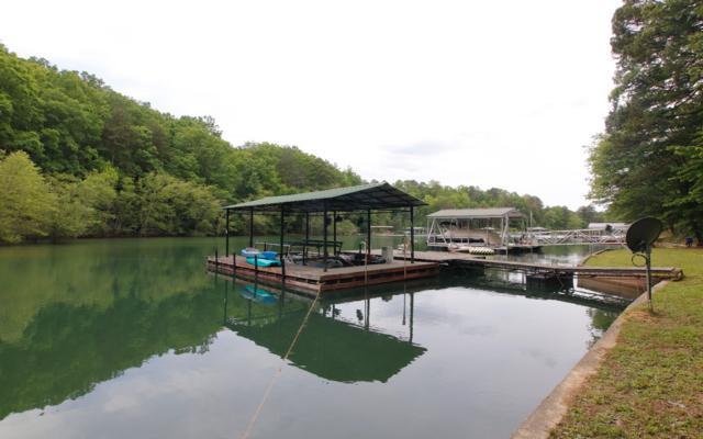 196 Lake Cove Circle, Morganton, GA 30560 (MLS #288464) :: RE/MAX Town & Country