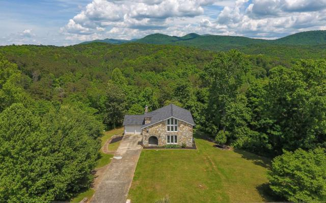 205 Orchard Rd, East Ellijay, GA 30540 (MLS #288476) :: RE/MAX Town & Country