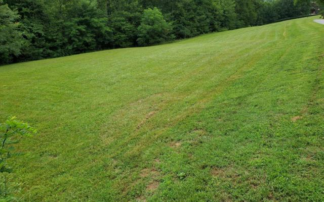 27C & 40C MOUNTAIN HARBOUR, Hayesville, NC 28904 (MLS #289866) :: RE/MAX Town & Country