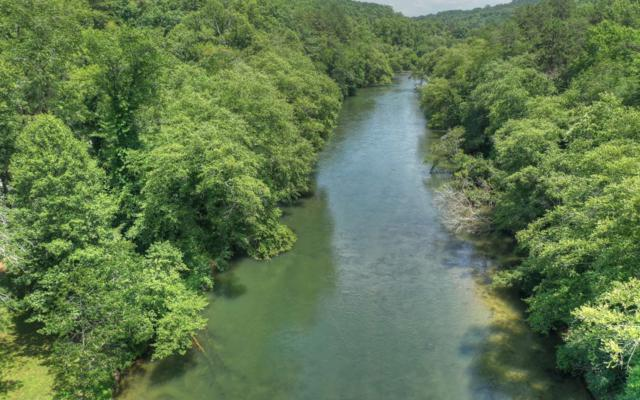 1351 North Toccoa River, Mineral Bluff, GA 30559 (MLS #289916) :: RE/MAX Town & Country
