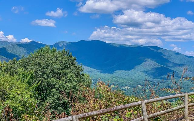 973 Butternut Lane, Hayesville, NC 28904 (MLS #290449) :: RE/MAX Town & Country