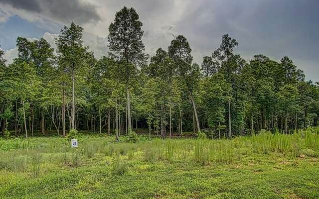 LOT28 Hidden Harbor, Blairsville, GA 30512 (MLS #290615) :: RE/MAX Town & Country