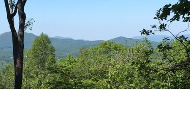 #296 Thirteen Hundred, Blairsville, GA 30512 (MLS #290840) :: RE/MAX Town & Country