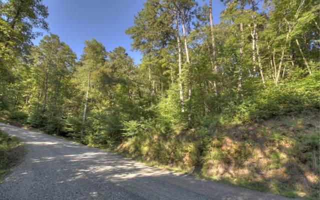 L 10 Toccoa Riverbend Est, Blue Ridge, GA 30513 (MLS #291226) :: RE/MAX Town & Country