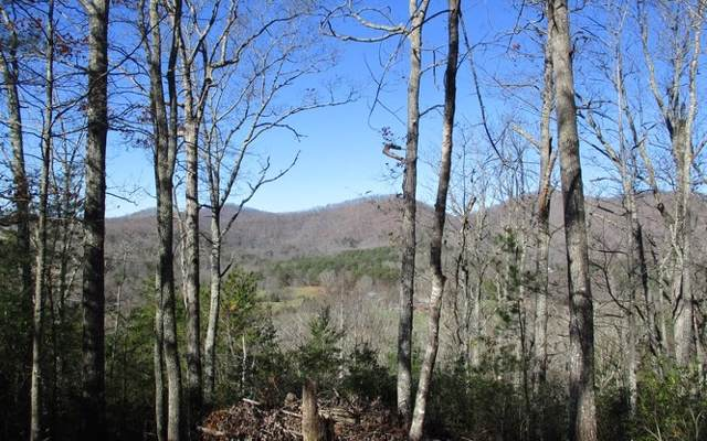 14/15 Trackrock View Est, Blairsville, GA 30512 (MLS #291352) :: Path & Post Real Estate
