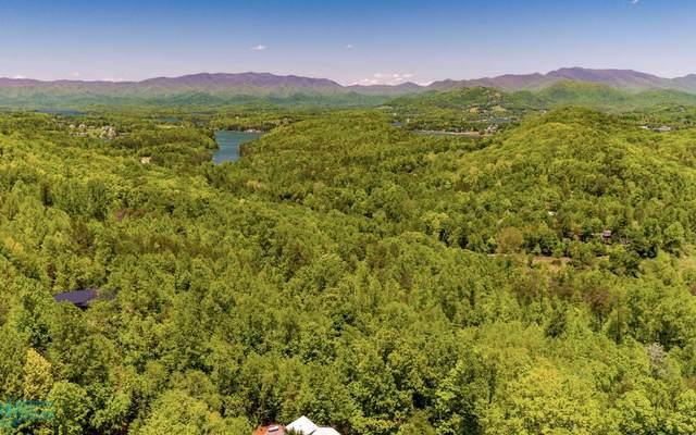 LT 29 Hidden Summit, Hiawassee, GA 30546 (MLS #291861) :: RE/MAX Town & Country