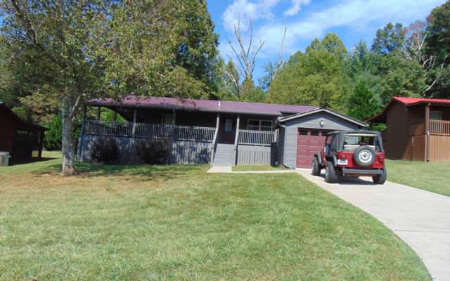 49 Copperhead Ct, Blairsville, GA 30512 (MLS #291876) :: RE/MAX Town & Country