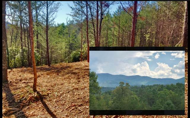 LOT52 Double Springs, Blairsville, GA 30512 (MLS #292116) :: RE/MAX Town & Country