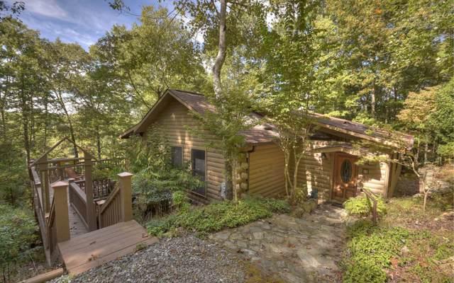 61 Buffalo Jump Trail, Morganton, GA 30560 (MLS #292746) :: RE/MAX Town & Country