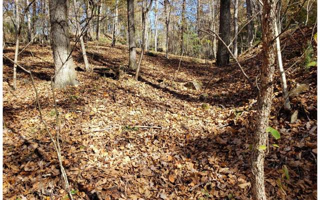 LT22 Toccoa River Forest, Mineral Bluff, GA 30559 (MLS #293335) :: RE/MAX Town & Country