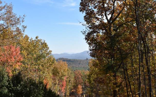 LOT14 Mull Lane, Morganton, GA 30560 (MLS #293438) :: RE/MAX Town & Country