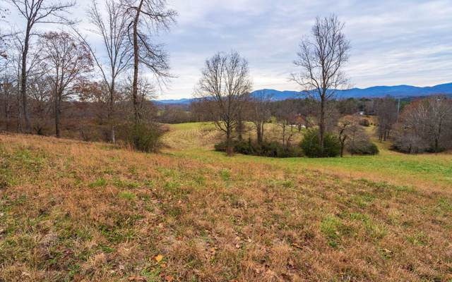 LT 89 Arbor Lane, Blairsville, GA 30512 (MLS #293727) :: RE/MAX Town & Country