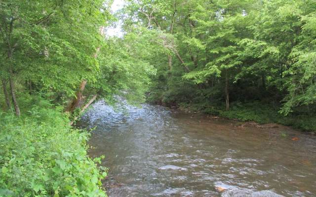 LOT 6 Meadow Creek Dr, Hayesville, NC 28904 (MLS #293912) :: Path & Post Real Estate