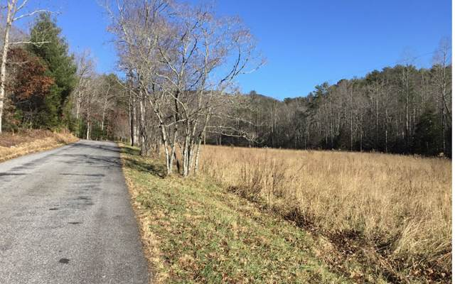 Rocky Top Road, Blairsville, GA 30512 (MLS #294059) :: RE/MAX Town & Country