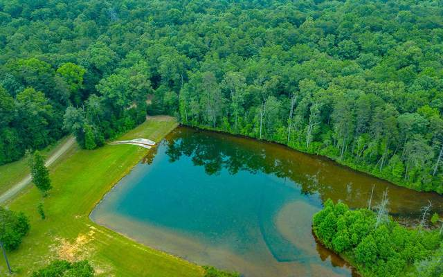 Grant's Summit, McCaysville, GA 30555 (MLS #294407) :: RE/MAX Town & Country