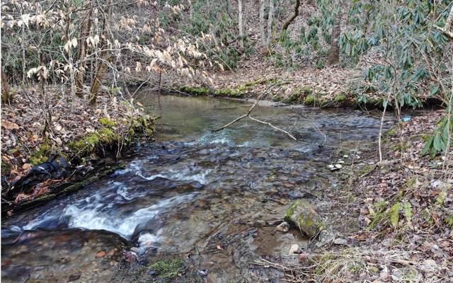 32 Chestnut Oaks, Andrews, NC 28901 (MLS #294914) :: Path & Post Real Estate