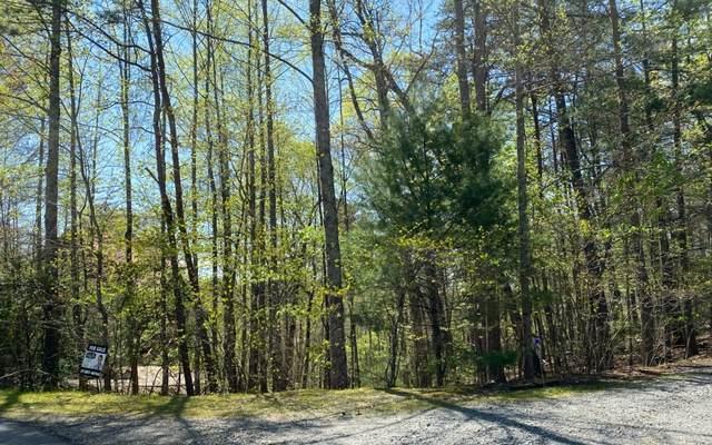 My Mountain, Morganton, GA 30560 (MLS #295190) :: RE/MAX Town & Country