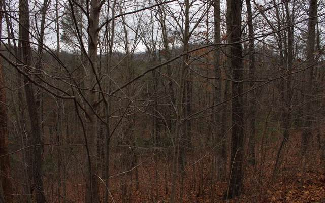 20 Thunder Road, Hayesville, NC 11764 (MLS #295264) :: Path & Post Real Estate