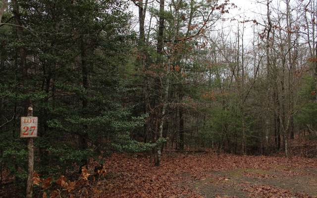 27 Coyote Cove, Hayesville, NC 28904 (MLS #295284) :: Path & Post Real Estate